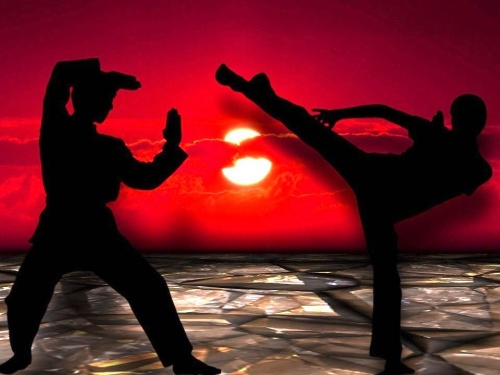 Filosofía de las artes marciales