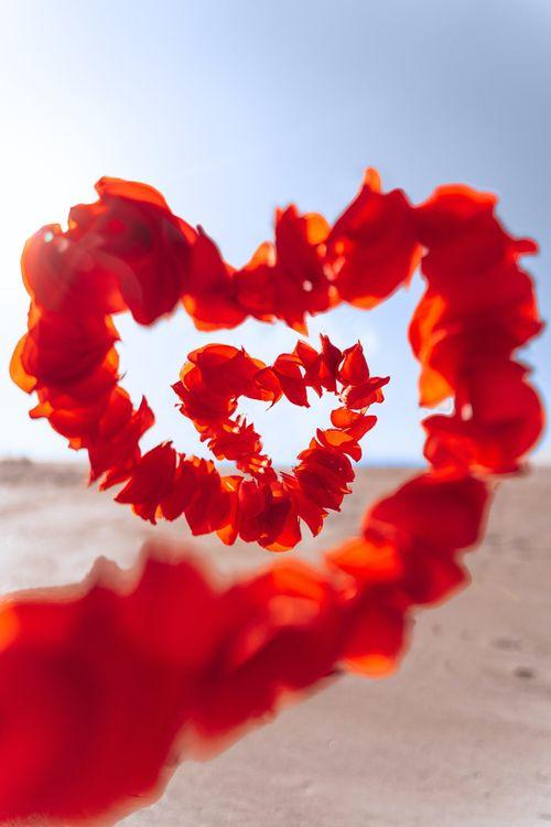 Què és l'amor? Una resposta des de la filosofia